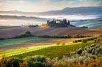 Early morning, Belvedere, Tuscany, Italy