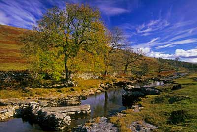 5310_Langstrothdale Autumn