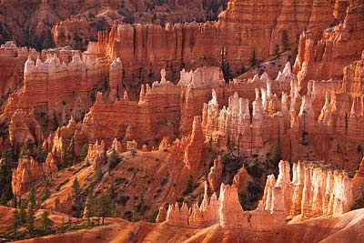 4615 Early Light, Bryce Canyon