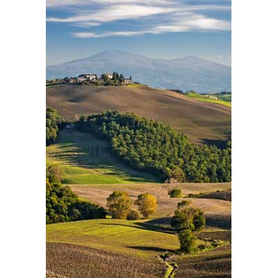 8609 Evening Light, near San Quirico